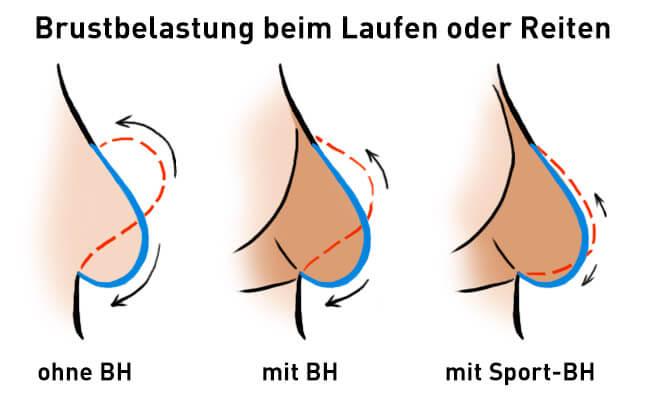 brustbelastung-sport-bh